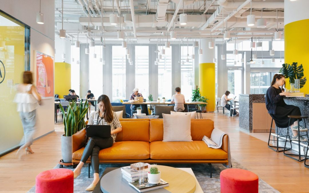 WeWork launches skills-based profiles as a value add for tenants